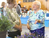 Barbara Lucas and Mary Lyle talk flowers during the Wetaskiwin Horticulture Society's Flower Show July 22 at Loons Golf Course.