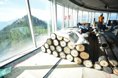 Fake decorative trees lie in a pile before being set up in the Banff Gondola upper terminal's new Above Banff interpretive gallery on Wednesday, Aug. 17, 2016. (Daniel Katz/ Crag & Canyon/ Postmedia Network)