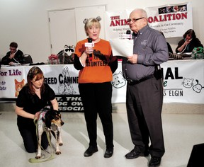 Volunteer Kim Gilmour, left, holds Susie while Lois Jackson of All Breed Canine Rescue and Ald. Gord Campbell talk on camera at a 2011 Animal Coaliton animal telethon organized by animal welfare groups.