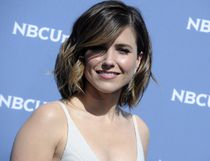 "<i>Have you ever had an absolutely horrible travel experience? You're not alone! Even the rich and famous sometimes face travel nightmares.</i><br><br><b>Sophia Bush:</b> The actress put an annoying plane passenger on blast after she was pestered during a flight. ""When you make a woman so visibly uncomfortable, that after you've ignored all visual cues to please leave her alone (one word answers, she pulls out a book, puts on a hat, she actually asks you not to speak to her with the tone and words you're choosing to use) that she finally GETS UP and MOVES SEATS, leave her alone,"" she wrote on Twitter. ""Signed, Every Woman On The Planet Who Is Sick of Your Creepy S**t."" (WENN.com)"