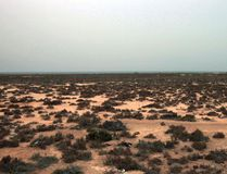 This Saturday, March 12, 2011 picture shows the desert outside the southeastern village of Ben Guerdane, Tunisia, close to the border with Libya. (AP Photo/Lefteris Pitarakis, File)