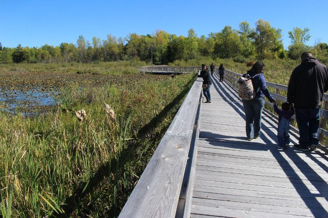Visitors to the Nature and Wildlife Day enjoy the rebuilt boardwalk at the Upper Canada Migratory Bird Sanctuary on Sunday September 25, 2016 in South Stormontl, Ont. Greg Peerenboom/Cornwall Standard-Freeholder/Postmedia Network