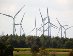 New wind turbine projects will be affected by the Ontario Liberal government canceling their green energy act to save money. Photograph taken on Tuesday September 27, 2016 near Strathroy, Ontario west of London. (MIKE HENSEN, The London Free Press)