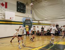 Adrienne McNeely sets up to bump the ball during the game against Holy Trinity at the senior girls volleyball tournament at Canmore Collegiate High School gym on Saturday, Oct. 1, 2016. Amanda Symynuk/ Crag & Canyon/ Postmedia Network