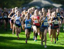 The senior girls race from the start at the TVRA cross-country championships at Springbank Park on Wednesday. The girls ran five kilometres while the senior boys race was seven km. (Mike Hensen/The London Free Press)