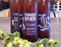 Forked River's Dysania American Pale Ale has been rebranded to support the Shine the Light on Women Abuse campaign and will be donating 50 cents from every bottle sold to the cause. (Special to Postmedia News)