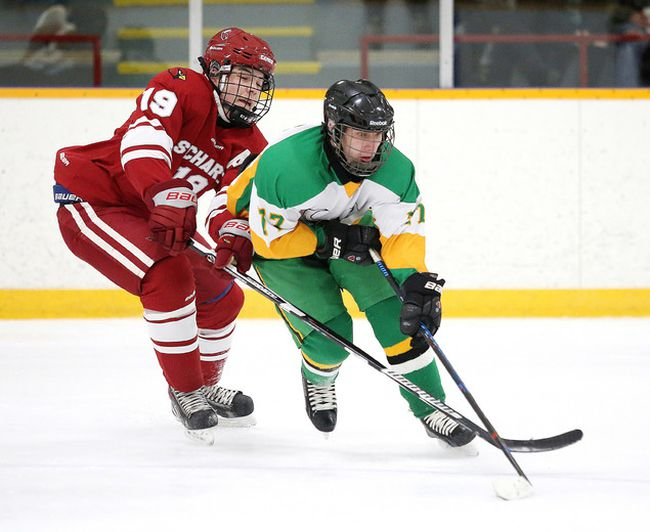 St. Charles Cardinals' Tanner Webkamigad battles for the puck with Jared Loyer of the Lockerby Vikings during boys high school hockey action in Sudbury, Ont., on Monday November 28, 2016. The Cardinals won 3-1. Gino Donato/Sudbury Star/Postmedia Network