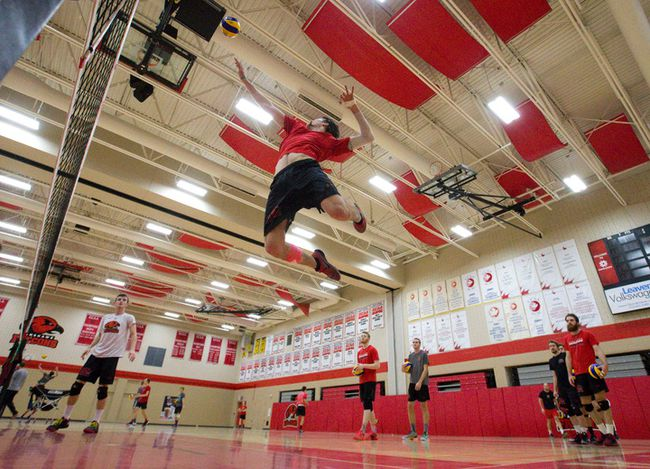 The Fanshawe Falcons men's volleyball team, who were ranked No. 1 in the country for the first time in program history a few weeks ago, practises Wednesday in preparation for a Friday match at home against Redeemer.  (CRAIG GLOVER, The London Free Press)
