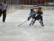 """A Melfort Peewee Mustangs' played works his way up the ice during the Mustangs' 7-4 loss to Muenster in the """"D"""" Final on Sunday, December 4."""