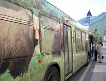 Banff's bear bus, part of the Roam transit system. Larissa Barlow/ Crag & Canyon Archives)