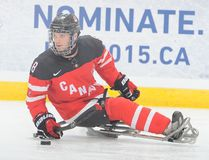 Tyler McGregor and Team Canada earned silver at the 2016 World Sledge Hockey Challenge in Charlottetown, P.E.I. The 22-year-old Forest native is in his fifth year with the national team. (Handout/Sarnia Observer/Postmedia Network)