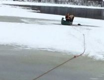 Officers rescuing Louis the puppy from the icy Gatineau River.