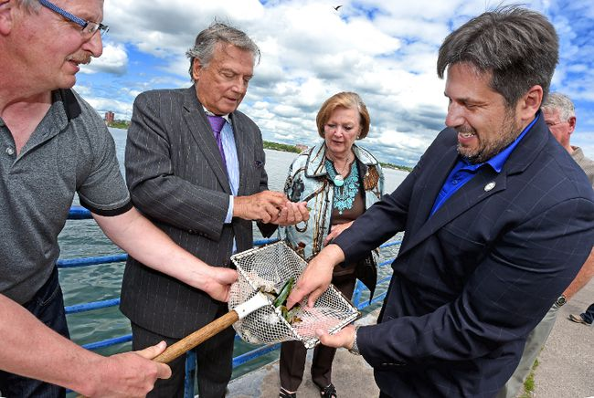 Richard and Theresa Barch (center) help stock Atlantic salmon outside Lake Superior State University's Aquatic Research Laboratory (ARL) in Sault Ste. Marie, Mich., during a June 3, 2016, ceremony that marked 30 years of LSSU raising and stocking one of the world's top sport fish into the St. Mary's river system and upper Great Lakes. Assisting are Lab manager Roger Greil (left) and LSSU President Tom Pleger.