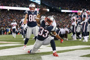 Dion Lewis of the New England Patriots celebrates after scoring a touchdown against the Houston Texans during an AFC divisional playoff Game at Gillette Stadium on Jan. 14, 2017. (Jim Rogash/Getty Images)
