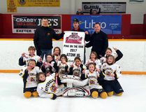 The Atom girls HL team poses for a picture after they won South Huron's annual Pink on the Rink tournament Jan. 8. SUBMITTED