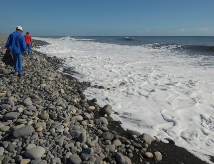 In this Aug. 10, 2015, file photo, municipal workers search Reunion Island beaches where expected debris of the missing Malaysia Airlines Flight 370 could be washed up onto the shore near Saint-Andre, on the French Island of Reunion. While search crews spent years trawling in futility through a remote patch of the Indian Ocean for the missing Malaysia Airlines Flight 370, people wandering along beaches on the other side of the ocean began spotting debris that washed ashore. Those pieces provided key information and raised questions whether Malaysia, Australia and China - who funded the hunt for the underwater wreckage - missed key opportunities by failing to organize coastal searches for plane parts. (AP Photo/Fabrice Wislez, File)