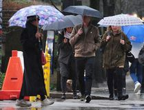 Pedestrians with umbrellas as a rainfall warning is in effect for Metro Vancouver and Abbotsford in Vancouver, BC., January 16, 2017. (NICK PROCAYLO/Postmedia Network)