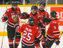 Attack teammates celebrate Marcus Phillips' second goal in the first period during Ontario Hockey League action against the Sarnia Sting at the Lumley Bayshore in Owen Sound, Ont. on Saturday, January 14, 2017. (JAMES MASTERS, Postmedia Network)