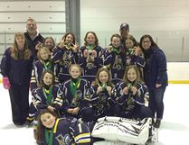 The U12A Airdrie Sting won a gold medal at ringette tournament in Regina. The Sting girls had great teamwork throughout the tournament, which helped them win first overall.