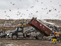 The Town of Stony Plain diverted 53 per cent of their waste from the landfill in 2016, but officials think they can do better. An educational campaign will be launched this year to try and bump the diversion rate up to 60 per cent. - File Photo