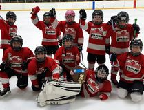 The novice house league Schumacher Daredevils netted three shutouts in four games as they took gold at the 32nd annual Sudbury Minor Hockey Association Scotiabank Fun Day Tournament last weekend. The team includes, back row, from left: Noah Cummings, Gavin Gagnon, Emelie Lefort, Ethan Gervais, Joshua Howson; front row, from left: Avah Paille, Nathan Roy, Keith Whalen, Owen Mills, Geoffrey Bacvar and Keith Hartling. SUPPLIED PHOTO/THE DAILY PRESS