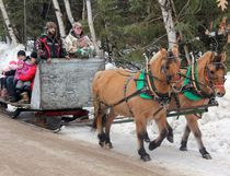 """Sean Chase/Daily Observer Folks took a traditional sleigh ride in a winter wonderland Sunday at the Alice and Fraser Recreation Centre. Driving the team of """"Tilly"""" and """"Toby"""" are Keena Turner (right) and Matt Dufour, who hail from Windy Willow Ranch in Chapeau."""