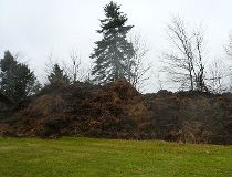 Mounds of manure