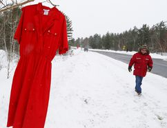 A number of red dresses were placed on trees at Laurentian University in Sudbury, Ont. on Tuesday February 14, 2017 as part of the Red Dress Campaign. John Lappa/Sudbury Star/Postmedia Network