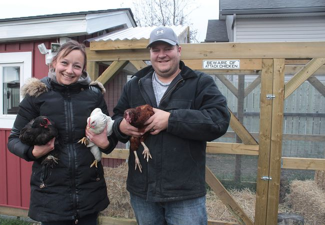 KEVIN RUSHWORTH HIGH RIVER TIMES/POSTMEDIA NETWORK. Cassandra Kirkpatrick, owner/operator of Jungle Out There Pet Services, and her husband Richard Trost built the first official urban chicken coop in High River, titled 'Cluckingham Palace.'