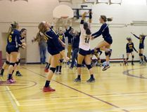 The College Avenue Knights celebrate the final point to win WOSSAA in London, Ont. at 'AA' WOSSAA senior girls' volleyball finals against Stratford St. Mike's on Thursday February 23, 2017. CASS won 3-1 and advance to OFSAA. Greg Colgan/Woodstock Sentinel-Review/Postmedia Network