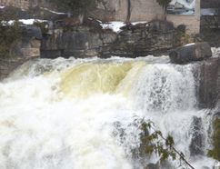 Water cascades over Inglis Falls on Friday. (Rob Gowan The Sun Times)
