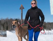 Monica Jahren walks her Great Dane, Derby at the Fort Creek Conservation Area. Ali Pearson/Sault This Week