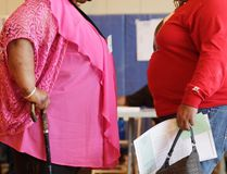 """In this June 26, 2012, file photo, two women converse in New York. """"Socially accepted normal body weight is shifting toward heavier weight. As more people around us are getting heavier, we simply believe we are fine, and no need to do anything with it,"""" said Dr. Jian Zhang, a public health researcher at Georgia Southern University and the lead author in a study released on Tuesday, March 7, 2017. (AP Photo/Mark Lennihan, File)"""