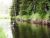 Neil casting a line on a west country Alberta spring creek