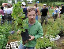 Organizer Dustin Bajer at the site to plant an edible urban forest. It's part of a city initiative to double the urban forest canopy over 10 years in MacKinnon Ravine on a south-facing slope in 2014. File photo.