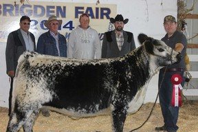Dave McKillop, right, of Fleetwood Speckle Park, Iona Station, was at the Brigden Fair's Speckle Park cattle show in 2014, a few years after purchasing his first Speckle Park cattle. The Canadian breed is becoming popular among Ontario beef farmers.