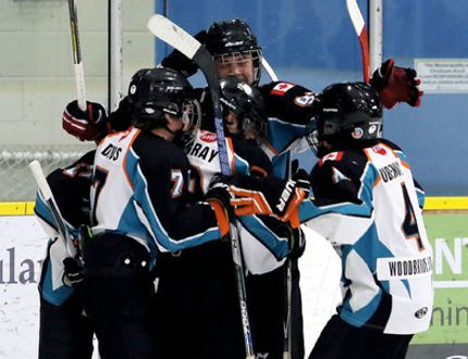The Kent Cobras celebrate after scoring a goal against the Brampton 45's in Game 1 of the Ontario Minor Hockey Association bantam AE1 final at Thames Campus Arena on Saturday, March 11, 2017. (MARK MALONE/The Daily News)