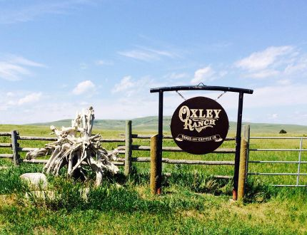 The Oxley ranch in southern Alberta.