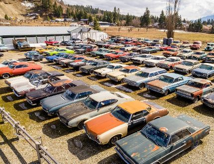 Five acres of land – with more than 300 cars included – for sale in B.C.
