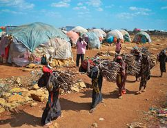 TOPSHOT - Women carry firewood on March 15, 2017 as they walk back to a makeshift camp on the outskirts of Baidoa, in the southwestern Bay region of Somalia, where thousands of internally displaced people arrive daily after they fleeing the parched countryside. The United Nations is warning of an unprecedented global crisis with famine already gripping parts of South Sudan and looming over Nigeria, Yemen and Somalia, threatening the lives of 20 million people. For Somalis, the memory of the 2011 famine which left a quarter of a million people dead is still fresh. TONY KARUMBA/Getty Images