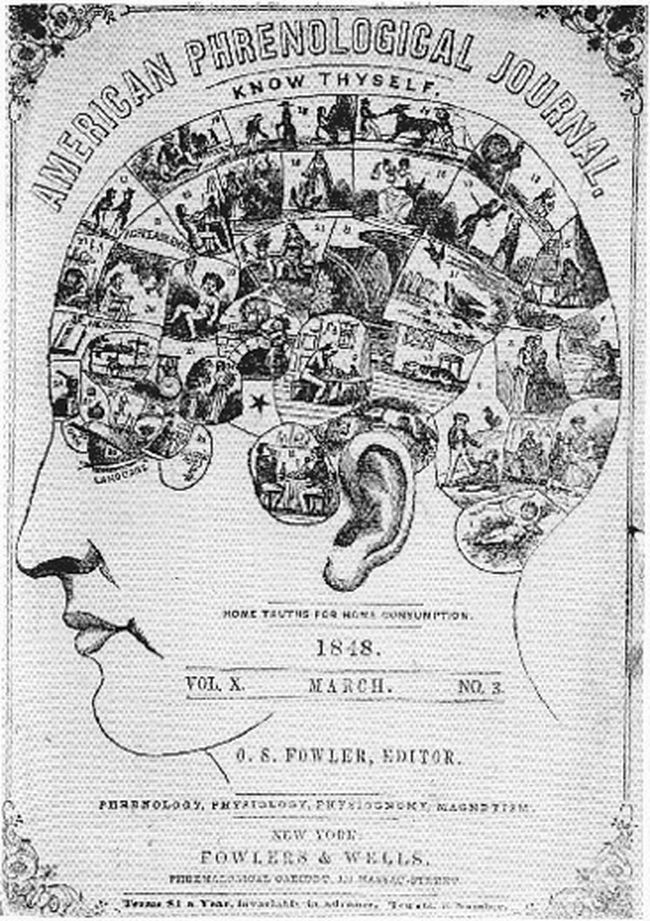 A cover of a 19th-century journal about phrenology, a discredited quackery that held intelligence could be gleaned from the shape of a person's head and the bumps on them.