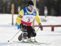Canada's Tony Flores pushes his way up a hill during the first day of IPC World Cup Para-Nordic ski racing at the Canmore Nordic Centre in December 2013. (Justin Parsons/ Crag & Canyon Archives)