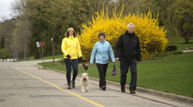 Lisa Engels walks with her parents Jane and Guy Engels and the family pooch Leo past some flowering forsythias in Springbank Park on Friday. For columnist Larry Cornies, Springbank is timeless. (MIKE HENSEN, The London Free Press)