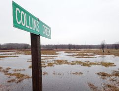 Kingston bought approximately 25 acres of land along Collins Creek as part of a legal settlement. (Elliot Ferguson/The Whig-Standard)
