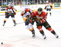 Owen Sound Attack defenceman Markus Phillips (right) battles with Erie Otters defenceman Jordan Sambrook (middle) while they race for the puck during first period Ontario Hockey League playoff action on Monday. Photo by Bill Walker (The Sun Tmes/Postmedia Network)