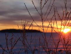 The sun rises over Lake Athabasca, seen from the shores of Fort Chipewyan, in this December 2014 file photo. Vincent McDermott/Fort McMurray Today/Postmedia Network