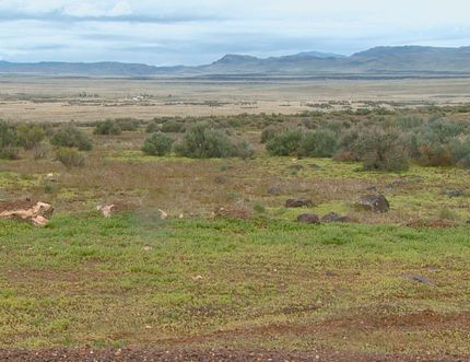 In this April 15, 2017, video image courtesy of KTVB-TV shows the remote area where skeletal remains were found in a badger hole north of Mountain Home, Idaho. (Paul Boehlke/KTVB via AP)