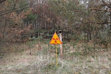 In this photo taken Wednesday, April 5, 2017, a radioactivity sign stands in the ground, outside Chernobyl, Ukraine. April 26 marks the 31st anniversary of the Chernobyl nuclear disaster. A reactor at the Chernobyl nuclear power plant exploded on April 26, 1986, leading to an explosion and the subsequent fire spewed a radioactive plume over much of northern Europe. (AP Photo/Efrem Lukatsky)