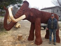 Two six-foot long tusks of this wooden woolly mammoth, created by Clavering chainsaw artist Bobbi Switzer, were removed by three vandals who were arrested and charged with mischief at Tara's Rotary pool park.