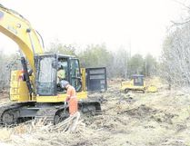 Land clearing at potential turbine site.